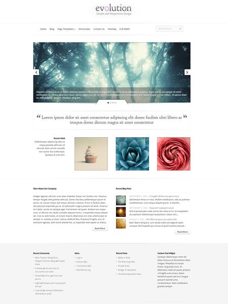 evolution 18 Best Minimalist WordPress Themes For Business, Portfolio, and Blogs