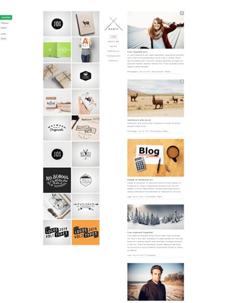 rabia 18 Best Minimalist WordPress Themes For Business, Portfolio, and Blogs