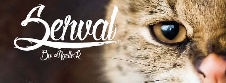 serval 25 Free Tattoo Fonts with Style