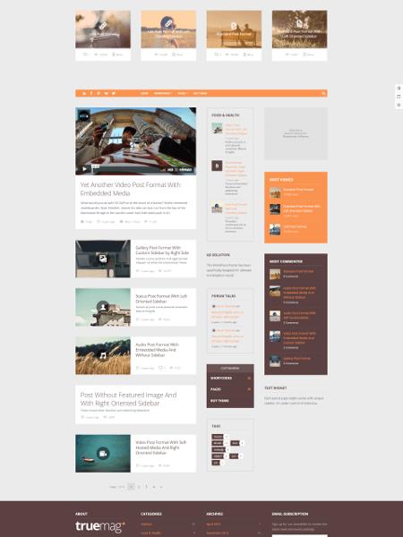 TrueMag 16+ Best AdSense Optimized WordPress Themes