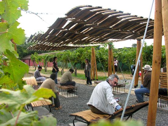 oak barrels, wine, chile