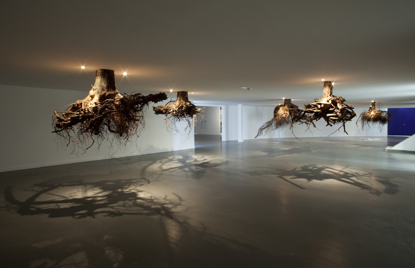 tree roots emerge from the ceiling in an installation by giuseppe licari