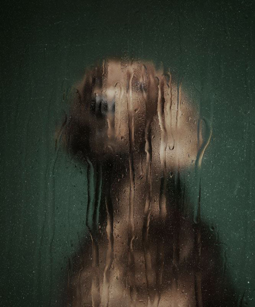 martin usborne: nice to meet you - portraits of abandoned dogs
