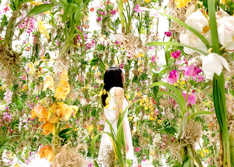 teamlab-floating-flower-garden-designboom-13