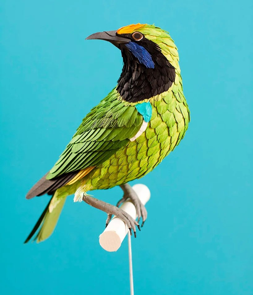 diana-beltran-herrera-paper-aviary-birds-designboom-011