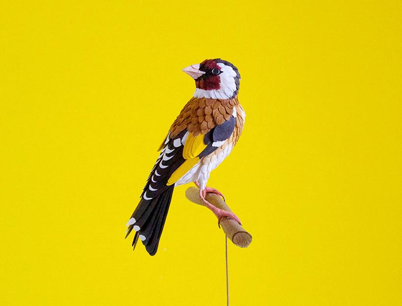 diana-beltran-herrera-paper-aviary-birds-designboom-015