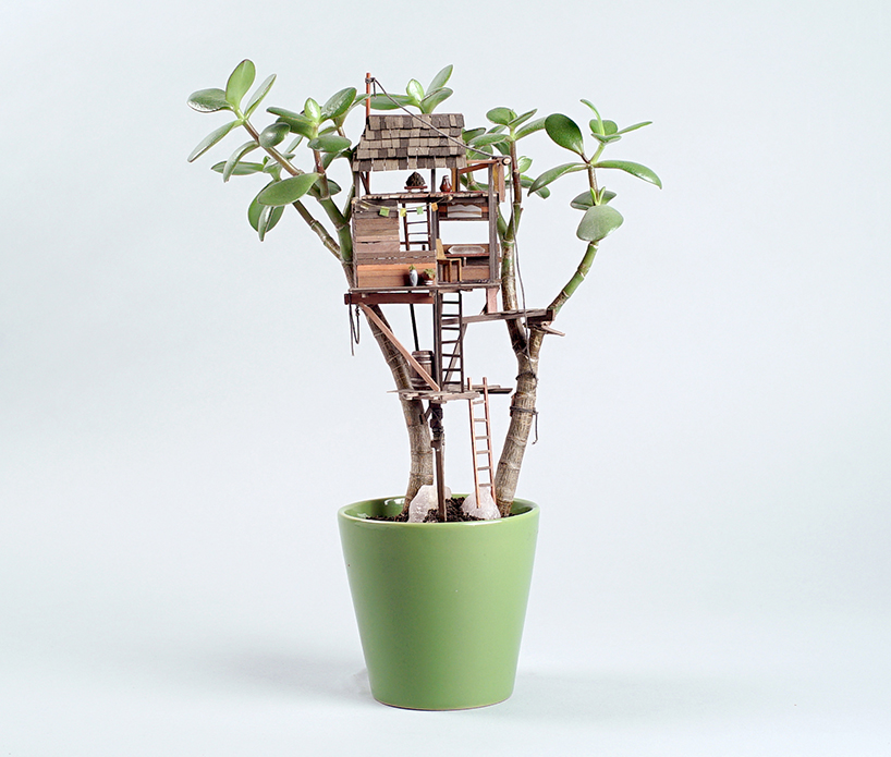 jedediah corwyn voltz builds tiny treehouses in succulent and cacti plants