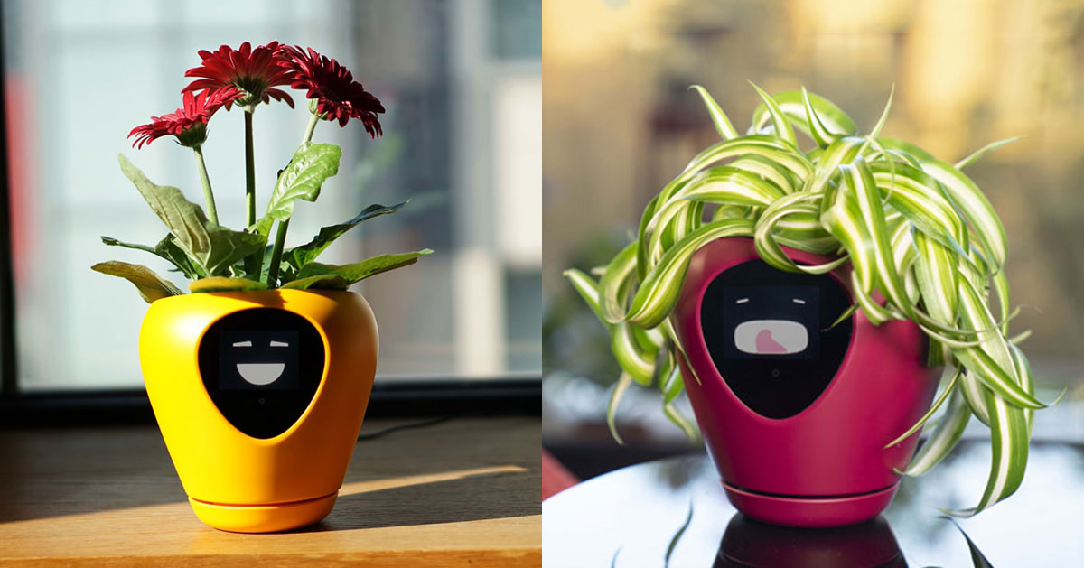 Lua Smart Planter Uses Facial Expressions To Help You Look