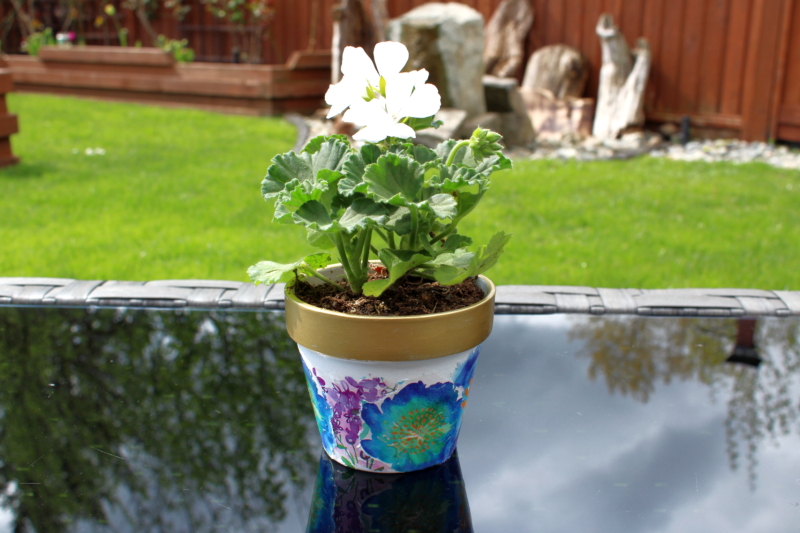 Using Mod Podge and wrapping paper to decoupage Terra Cotta Pots from the dollar store. These are fabulous outside. You can make these with the kids, for a gift or for yourself.
