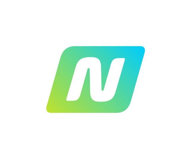 Netshoes logo1