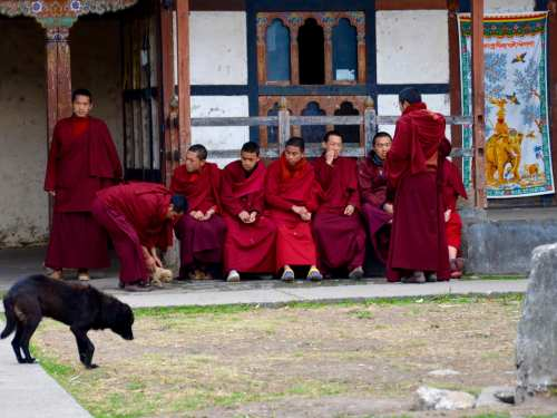 Novices in Bhutan