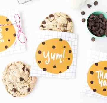 Printable Chocolate Chip Cookie Pouches