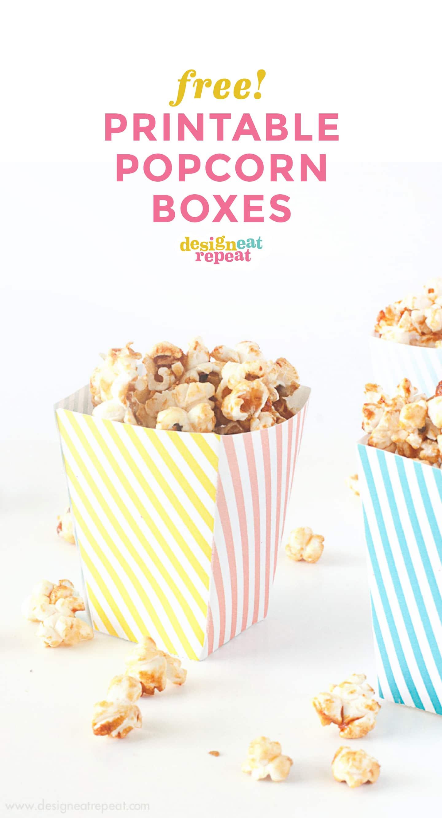 box like the pros pdf