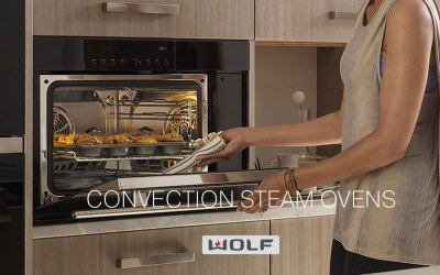 Amazing Wolf Convection Steam Oven