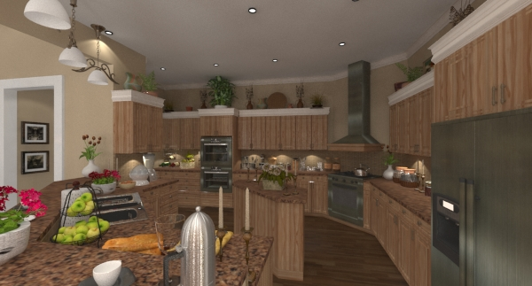 Renica kitchen