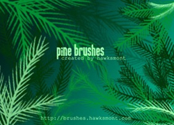 pineBrushes
