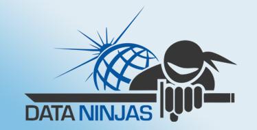 Data Ninjas