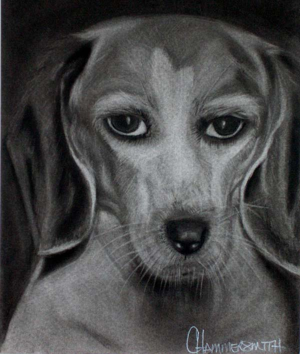 Portrait of Abby, charcoal drawing of Abby in her senior years - 2006