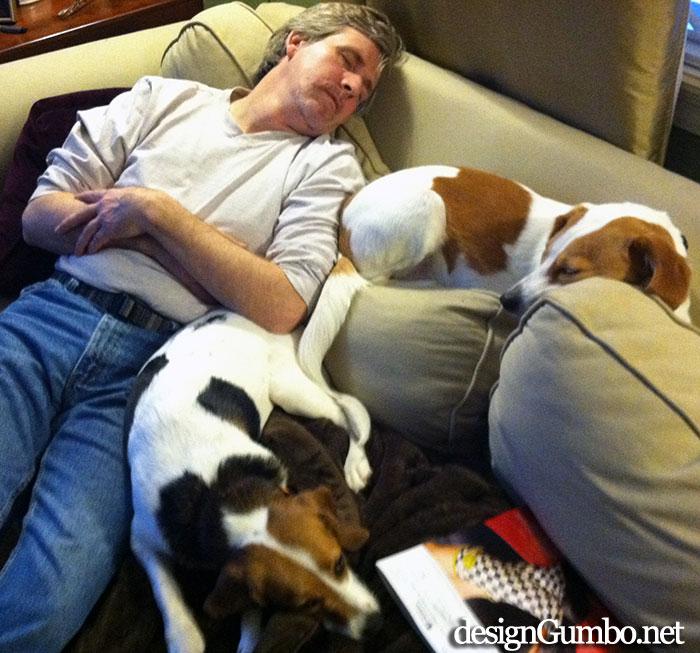 Dad, Me & Lexi - my pack.  Beagle, human, lemon bobble