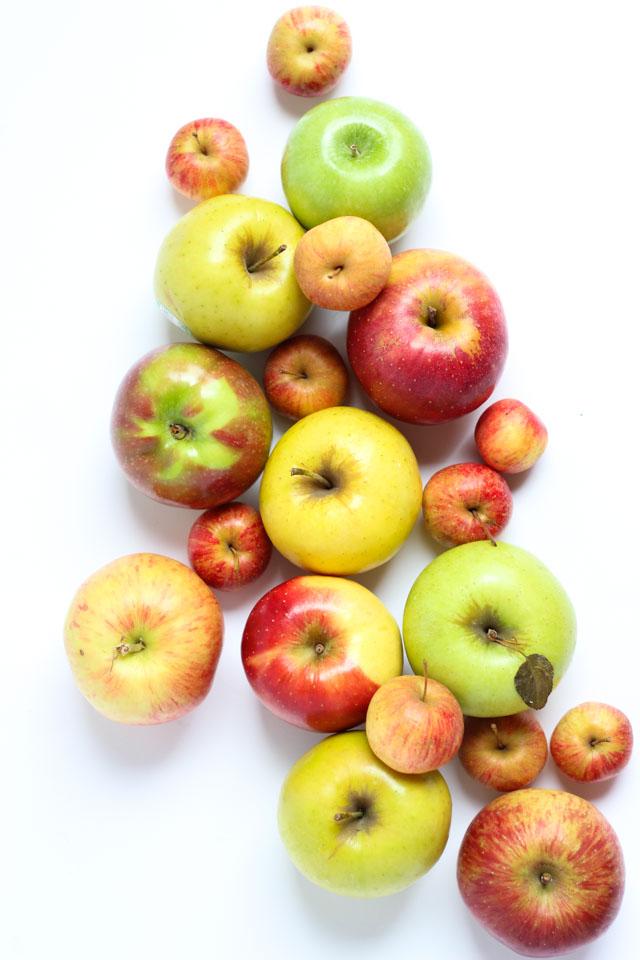 Gorgeous fall apple art!