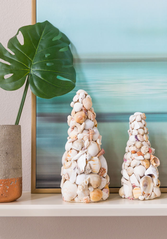 Seashell craft decor idea