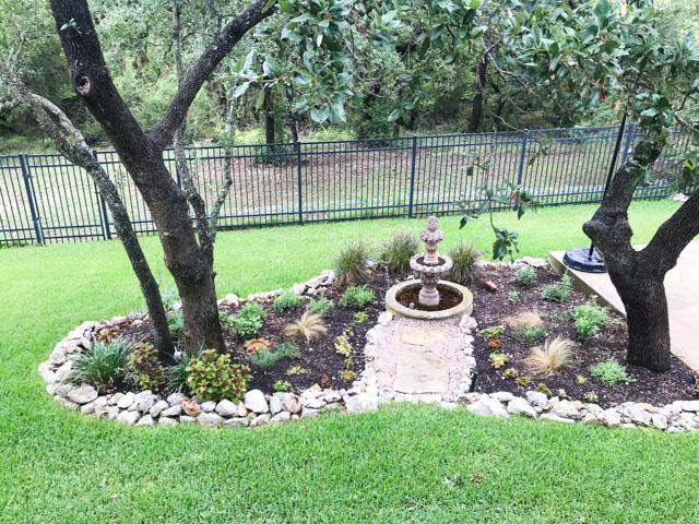 Our backyard habitat