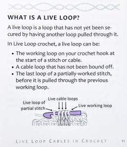 Excerpt: what is a Live Loop from page 11