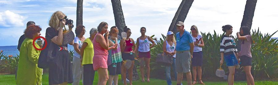 Shangri La tour group