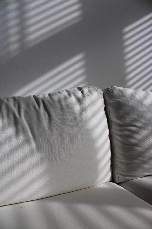 Window blind light