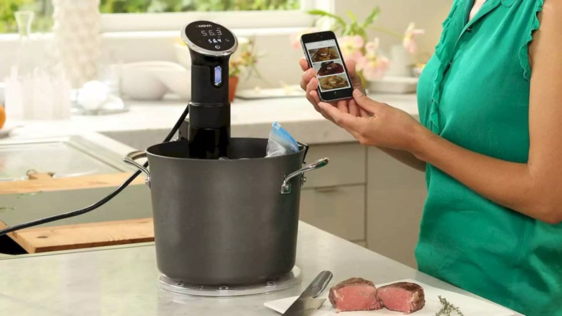 Anova Precision Cooker 1