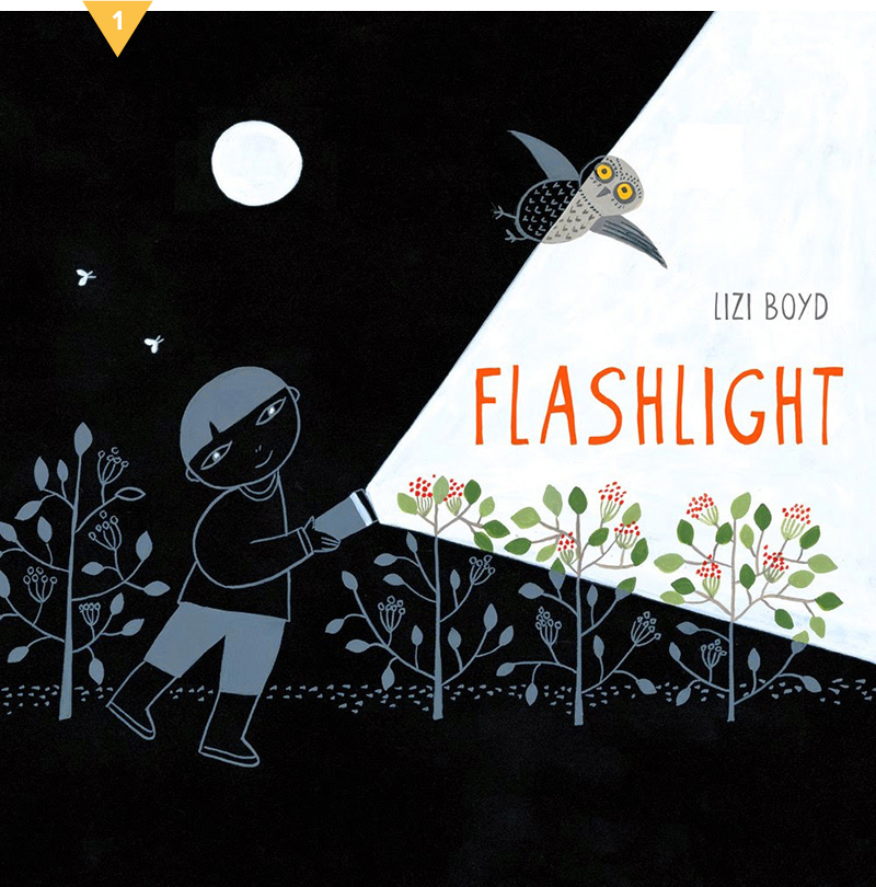 Flashlight #givebooks
