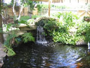 Garden Pond Design Pictures CPzy