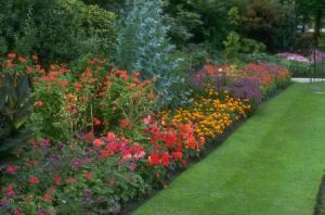 How To Design A Perennial Garden GnDM