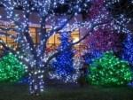 outdoor-christmas-lights-ideas-YtCu