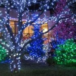 Outdoor Christmas Lights Ideas YtCu