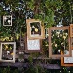 Outdoor Weddings Ideas DOkm