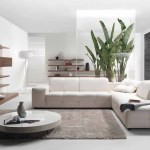 Modern Contemporary Living Room Ideas