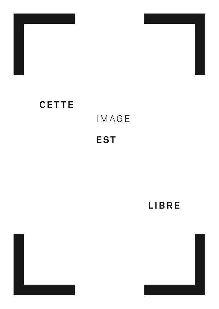 pour-charlie-un-hommage-a-l-insolence-2