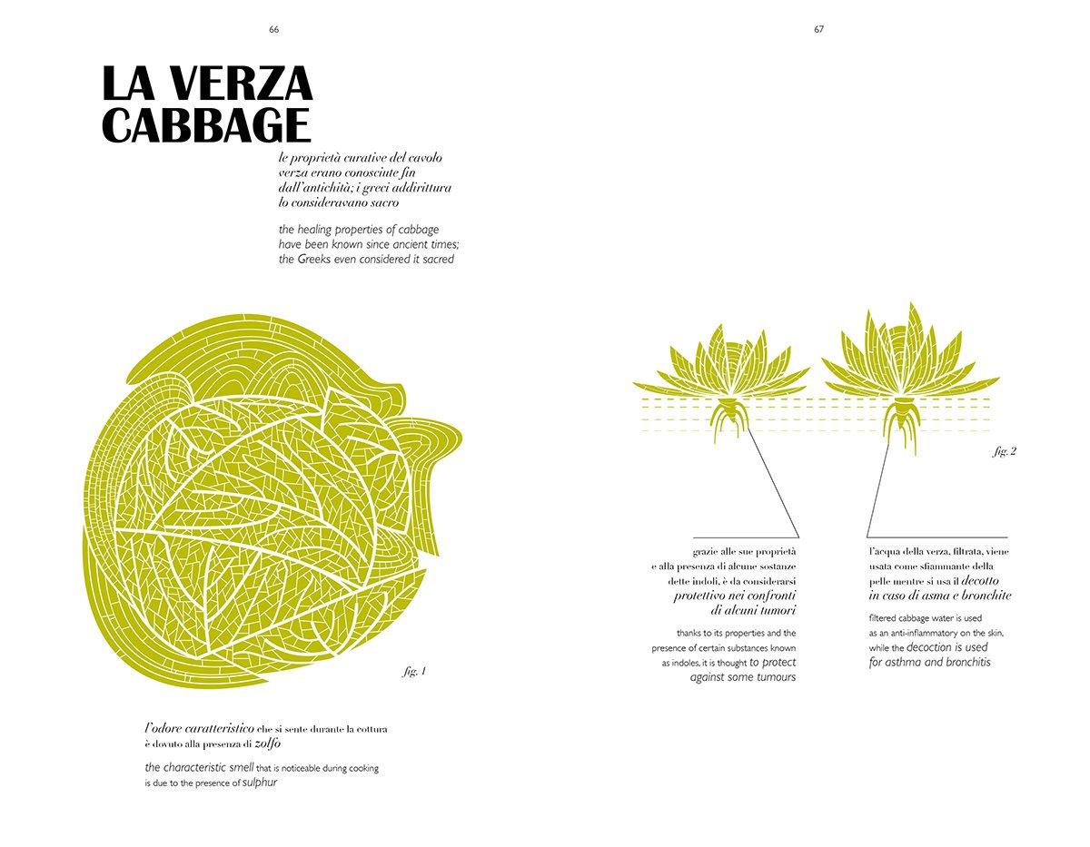 herbarium_taste-6