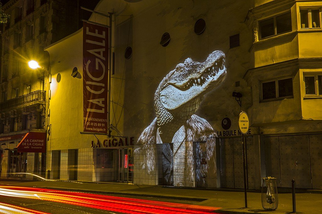 Le Crocodile de la Cigale / The Crocodile of La Cigale // 2015 © Julien NONNON