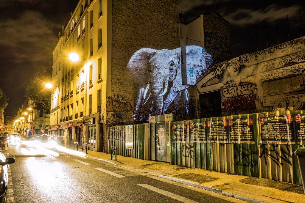 L'Éléphant d'Orfila / The Elephant of Orfila // 2015 © Julien NONNON