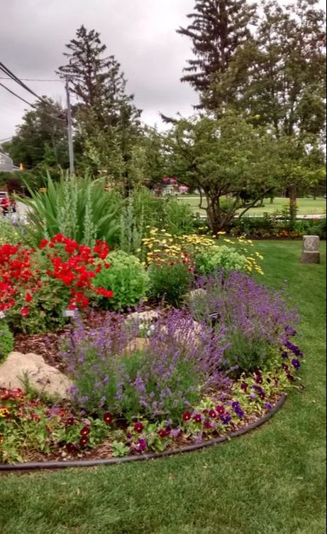Landscape Design Plants