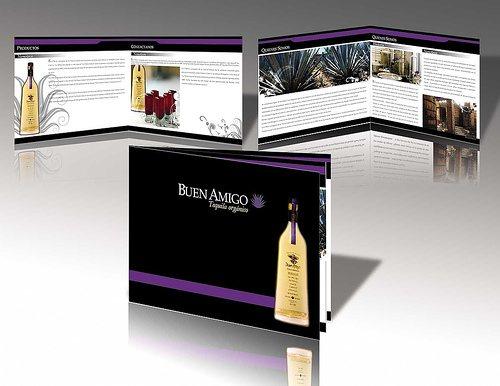 buenamigo 50 Amazing Brochure Layout Ideas