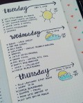 25+ Genius Bullet Journal Layouts for Your Healthy Living