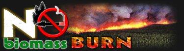 Logo for No Biomass Burn - http://www.nobiomassburn.org