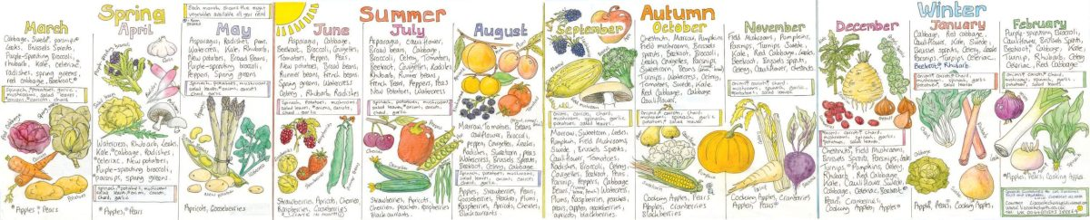 Fruit and Vegetable Chart