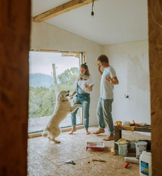 Home renovation Renovating a fixer-upper house
