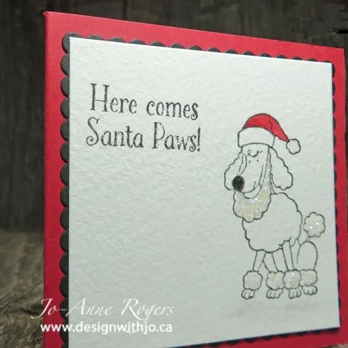 dog lovers Christmas cards in a snap