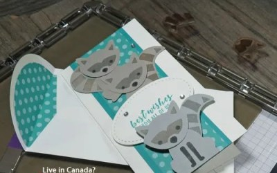 How to Save Money with the Stampin Up Stamparatus   VIDEO