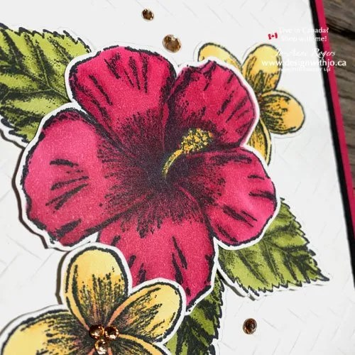 Learn This Cool Alcohol Marker Technique with Stampin Blends